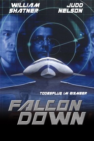 Falcon Down - movie with Dale Midkiff.