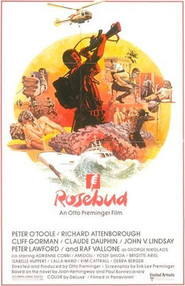 Rosebud is the best movie in Amidou filmography.