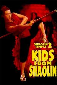 Shao Lin xiao zi is the best movie in Jet Li filmography.