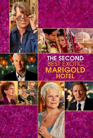 The Second Best Exotic Marigold Hotel - movie with Dev Patel.