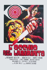 L'occhio nel labirinto - movie with Sybil Danning.