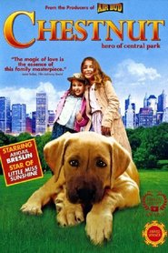 Chestnut: Hero of Central Park is the best movie in Ethan Phillips filmography.