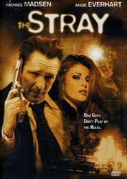 The Stray is the best movie in Bailey Chase filmography.