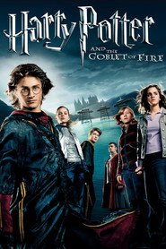 Harry Potter and the Goblet of Fire - movie with Alan Rickman.