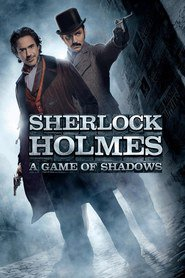 Sherlock Holmes: A Game of Shadows - movie with Stephen Fry.
