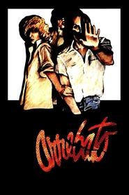 Arrebato is the best movie in Cecilia Roth filmography.