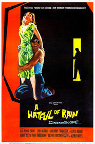 A Hatful of Rain is the best movie in Lloyd Nolan filmography.