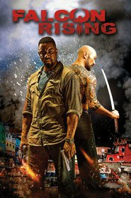Falcon Rising - movie with Neal McDonough.