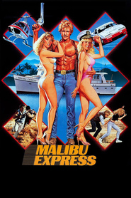 Malibu Express is the best movie in Sybil Danning filmography.