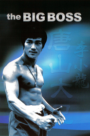 Tang shan da xiong is the best movie in Yin-Chieh Han filmography.
