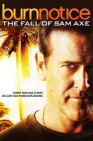 Burn Notice: The Fall of Sam Axe - movie with Pedro Pascal.
