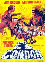 El Condor is the best movie in Lee Van Cleef filmography.