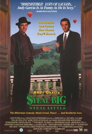 Steal Big Steal Little is the best movie in Andy Garcia filmography.