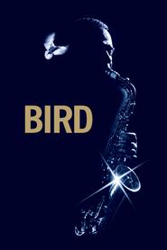 Film Bird.