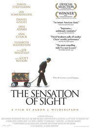 The Sensation of Sight is the best movie in Ian Somerhalder filmography.