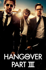 The Hangover Part III - movie with Melissa McCarthy.