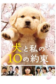 Inu to watashi no 10 no yakusoku is the best movie in Mayuko Fukuda filmography.