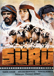 Suru is the best movie in Tuncel Kurtiz filmography.