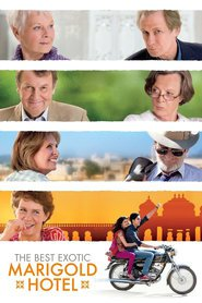 The Best Exotic Marigold Hotel is the best movie in Dev Patel filmography.