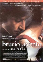 Brucio nel vento is the best movie in Ivan Franek filmography.
