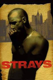 Strays is the best movie in F. Valentino Morales filmography.