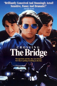 Crossing the Bridge is the best movie in David Schwimmer filmography.