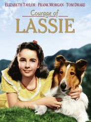 Courage of Lassie is the best movie in Elizabeth Taylor filmography.