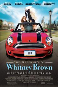 Whitney - movie with Rhea Seehorn.