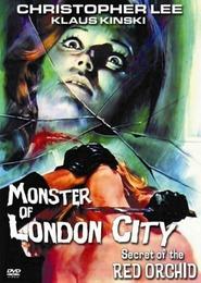 Das Ungeheuer von London City is the best movie in Dietmar Schonherr filmography.