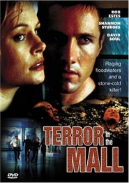 Terror in the Mall - movie with Danny Webb.