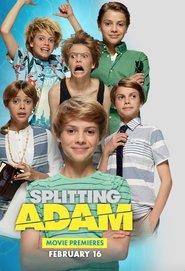Splitting Adam is the best movie in Jace Norman filmography.