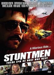 Stuntmen is the best movie in Zachary Levi filmography.