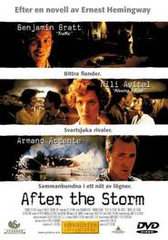 After the Storm - movie with Benjamin Bratt.
