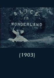 Alice in Wonderland is the best movie in Cecil M. Hepworth filmography.