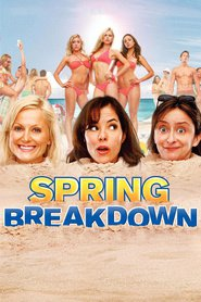 Spring Breakdown - movie with Jane Lynch.