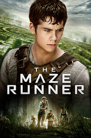 The Maze Runner is the best movie in Will Poulter filmography.