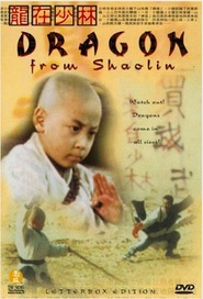 Long zai Shaolin - movie with Kar-Ying Law.