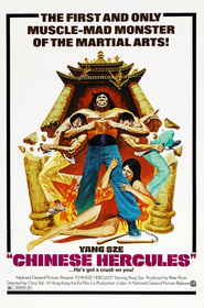 Ma tou da jue dou is the best movie in Bolo Yeung filmography.