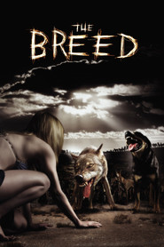 The Breed is the best movie in Michelle Rodriguez filmography.