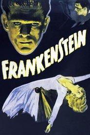 Frankenstein is the best movie in Lionel Belmore filmography.