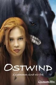 Ostwind - Zusammen sind wir frei is the best movie in Detlev Buck filmography.