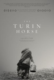 A Torinoi lo is the best movie in Janos Derzsi filmography.