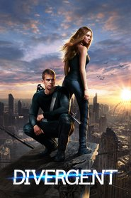 Divergent is the best movie in Shailene Woodley filmography.