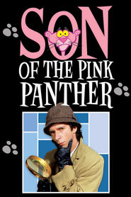 Son of the Pink Panther - movie with Shabana Azmi.