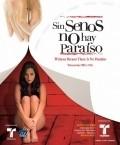 Sin senos no hay paraiso is the best movie in Katrin Siachoke filmography.