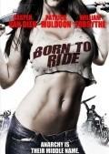 Born to Ride is the best movie in Casper Van Dien filmography.