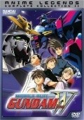 Mobile Suit Gundam Wing - movie with Brian Drummond.