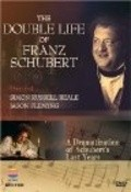 The Temptation of Franz Schubert - movie with Simon Russell Beale.