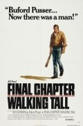 Final Chapter: Walking Tall is the best movie in Bo Svenson filmography.