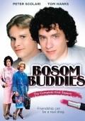 Bosom Buddies  (serial 1980-1982) is the best movie in Tom Hanks filmography.